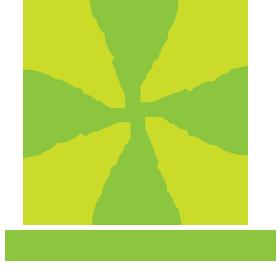 Palmiarnia
